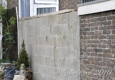 Garden wall before