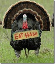 eat_ham_turkey