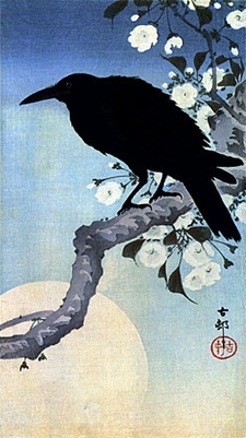Crow-on-Cherry-Branch