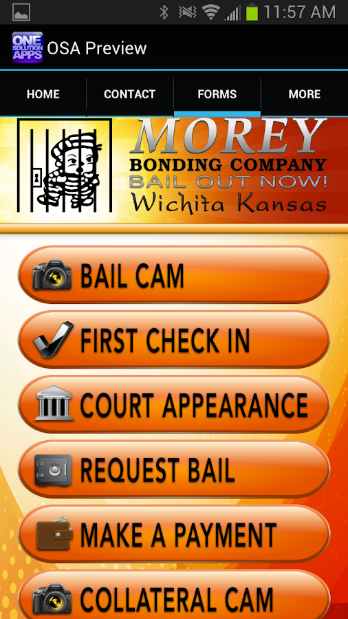 Kansas Bail- screenshot