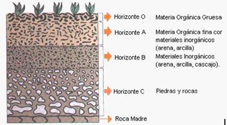 El laboratorio del qu mico el suelo caracteristicas y for El suelo y sus capas