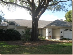 Tile-Roof-Cleaning-33601-Tampa-FL 11-17-2009 3-13-18 AM