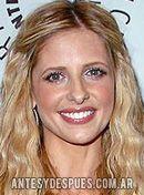 Sarah Michelle Gellar, 2009