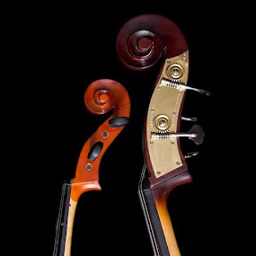 his & hers by Amy Woldrich - Artistic Objects Musical Instruments ( oregon, portland, bass, conrads, pdx, cello,  )