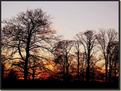 Sunset from outside Dunham Massey house