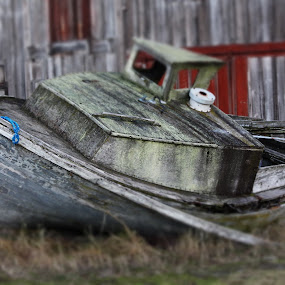Stranded by T.M Mathis - Transportation Boats ( stranded, old, wooden, displaced, boat )