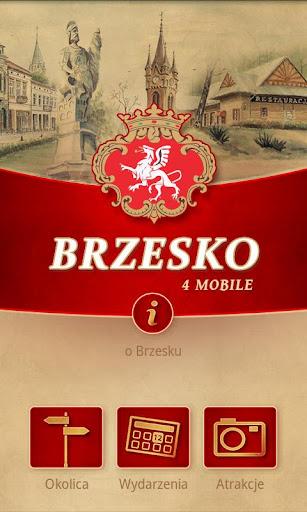 Brzesko 4 MOBILE