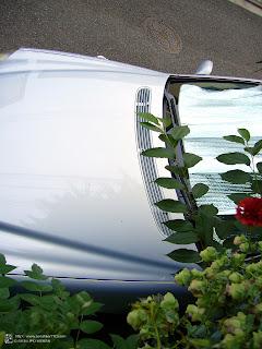 メルセデスベンツ S320 01y
