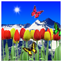 Tulips live wallpapers icon