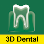 3D Dental A-Z: Anatomy & more!