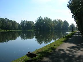 203 - Parque Wilanow.JPG