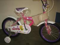 1 Sepeda Anak FAMILY CAPRICORN