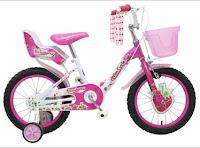 Sepeda Anak WIMCYCLE MINI STRAWBERRY 16 Inci
