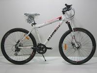 1 Sepeda Gunung ELEMENT SMART-2 26 inci