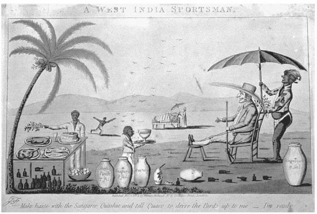 A West India Sportsman. Europe's imperial powers built their colonies on a racial hierarchy that exploited the indigenous population and imported Africans as slaves. This cartoon, published in England in 1807, satirizes the situation as it developed in colonial Jamaica.