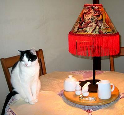 BB beside a lamp