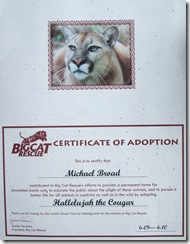 Big Cat Rescue Certficate of Adoption