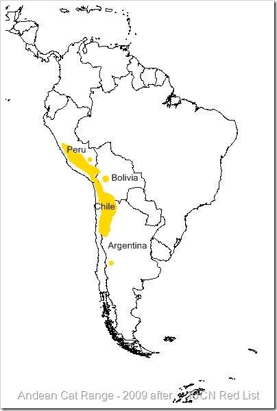 Andean cat range