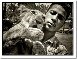 Lion picture of cub and person in Egypt by Xavier Fargas