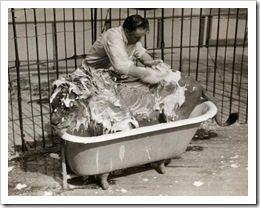 circus lion being washed in bath tub - photo by Wisconsin Historical Society