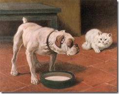 Arthur Heyer Bulldog and white Angora or Persian cat