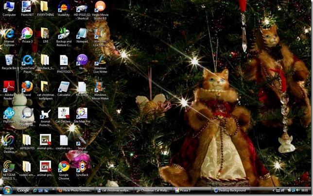 cat christmas wallpaper 111