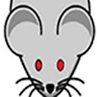 Evil Mouse Game For Cats icon