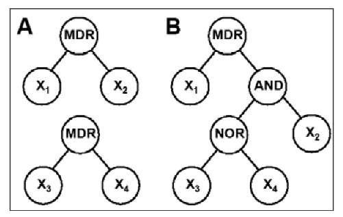 Genome-Wide Analysis of Epistasis Using Multifactor