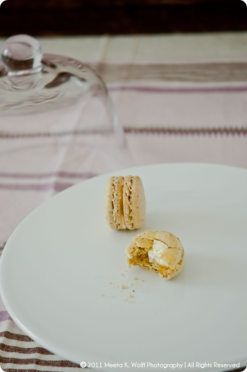 Lemon Pepper Macarons (0023) by Meeta K. Wolff