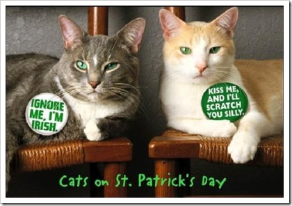 catsonstpatricksday