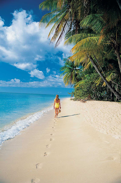 Go for a solo stroll in the tropics on your Windstar cruise.
