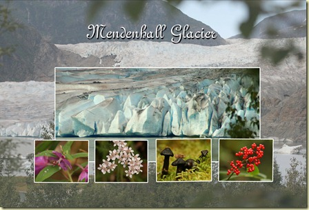 Copy of mendenhall glacier 2 copy