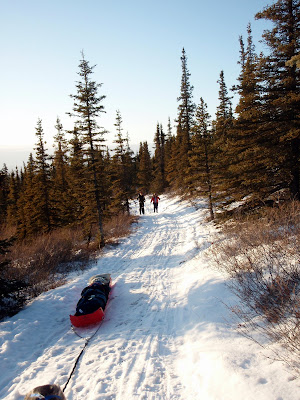 An Evening at Moose Creek Cabin « Go Play Outside!