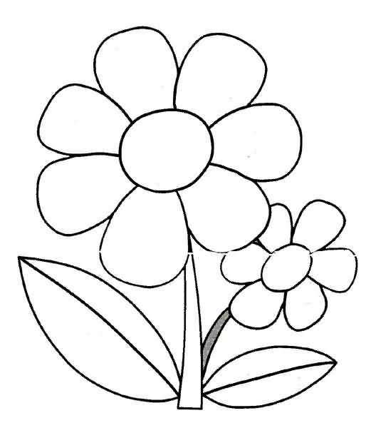 Una Flor Para Colorear Llanten Imagui