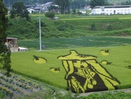 rice-paddy-art (12)