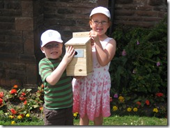 2.QP kids Bird box