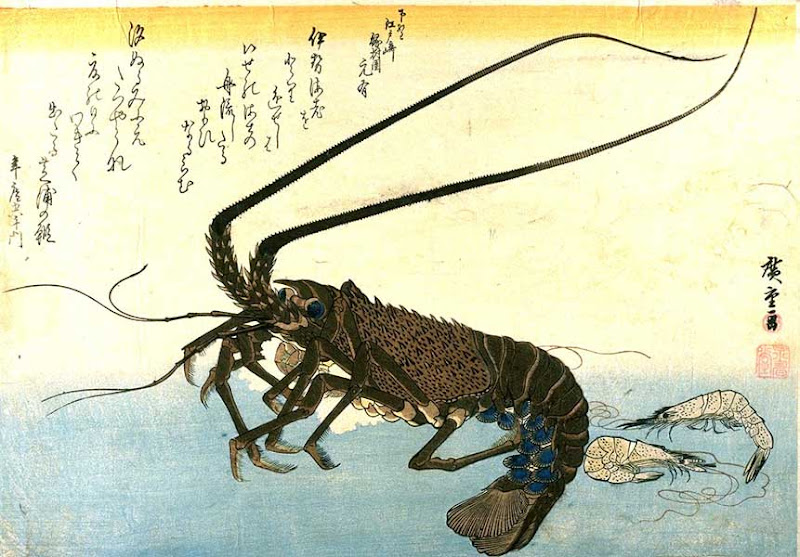 utagawa hiroshige, two shrimp and a lobster
