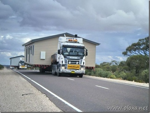 Transportes imensos (24)
