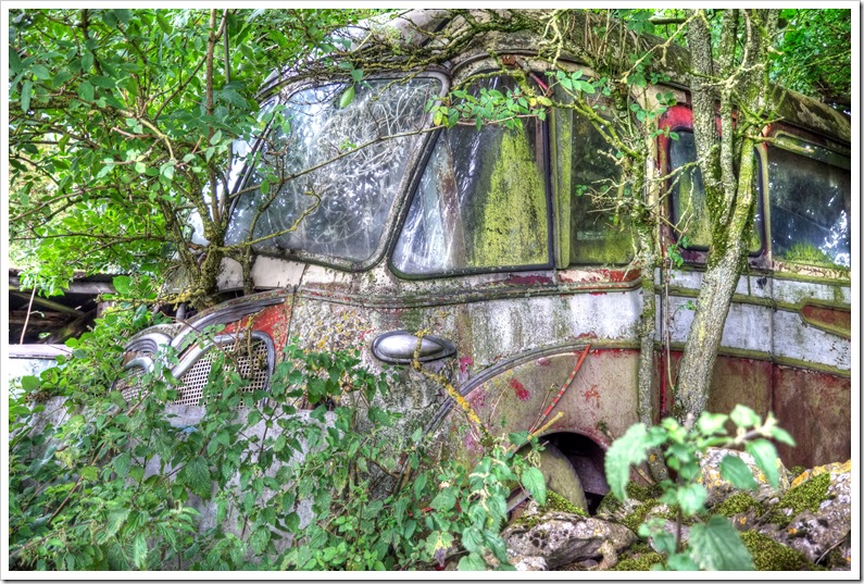 old coach being reclaimed by nature in peak district scrapyard