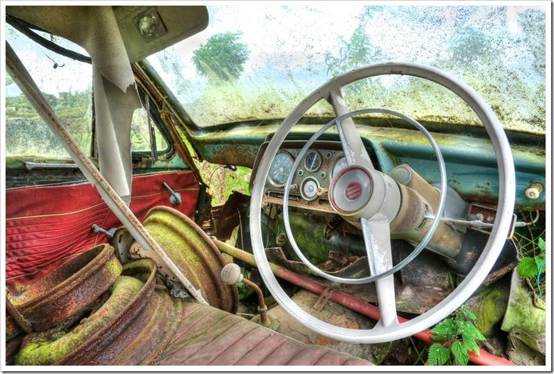 interior of old car rotting in situ