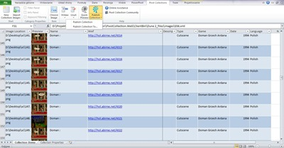 Excel Pivot Collections