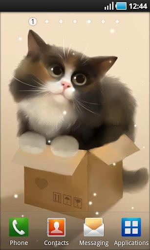 Cat in the Box Lite