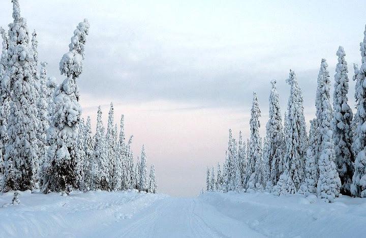 http://lh3.ggpht.com/_UTri2IteCmU/TQp9FWhHicI/AAAAAAAAAFo/8grDO5cgFp4/s720/sneg.Est.jpg