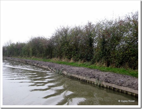 Ashby canal 021