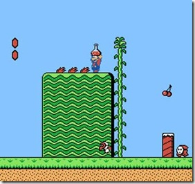 super-mario-bros-2-nes-potion