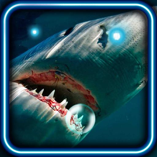 Sharks Best HQ live wallpaper LOGO-APP點子