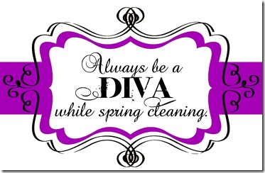 CLEANING DIVA TAG