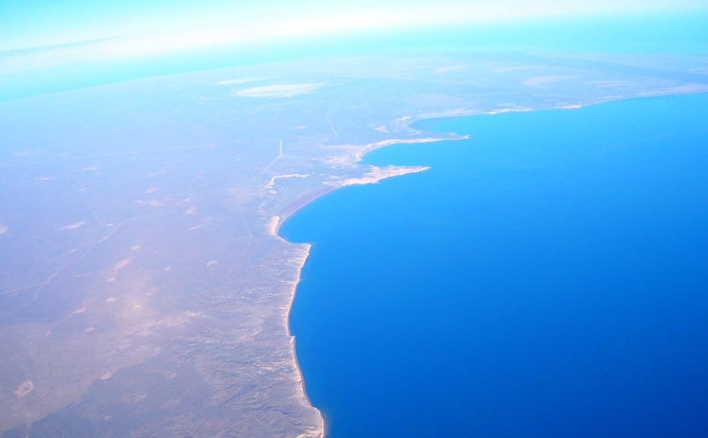 Ballena franca Austral en Península Valdés, Argentina