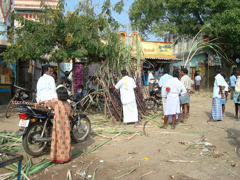 miyzone tluanga colney pongal festival in tamil nadu kolam s pongal festival in tamil nadu kolam s