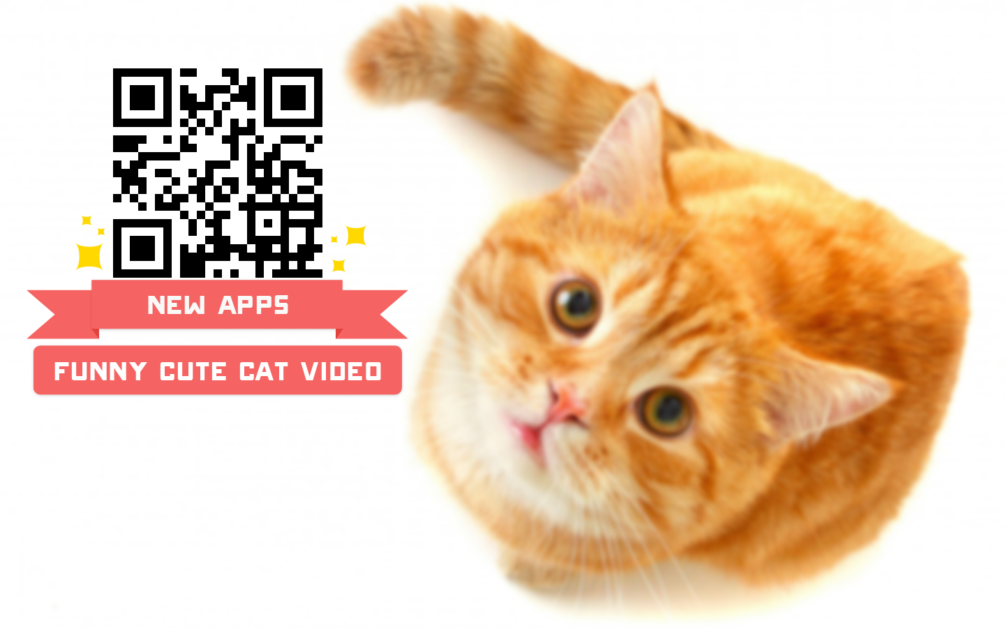 Funny Cute Cat Video Android Apps on Google Play